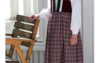 Annríki - Þjóðbúningar og skart. Hópur kvenna og barna í íslenskum þjóðbúningum.